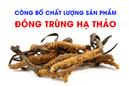 Tp. Hồ Chí Minh: Công Bố Chất Lượng Sản Phẩm Đông Trùng Hạ Thảo CL1657509