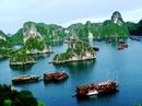 Tp. Hồ Chí Minh: Tour Hà Nội Ninh Bình Hạ Long Sapa CL1665901P11