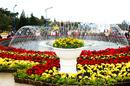 Tp. Hồ Chí Minh: Tour Nha Trang Đà Lạt 4 Ngày 4 Đêm Giá Rẻ CL1646422