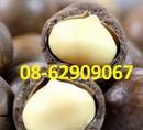 Tp. Hồ Chí Minh: Quả MACCA- Rất tốt cho các bà mẹ và thai nhi- giá rẻ CL1647059