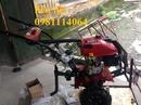 Tp. Hà Nội: đại lý phân phối máy xới đất chính hãng Oshima giá tốt nhất CL1648512P1