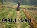 Tp. Hà Nội: địa chỉ phân phối máy làm đất đa năng dàn xới trước chính hãng CL1653317