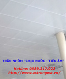 Tp. Hà Nội: Tấm trần đục lỗ ốp ngoài hành lang, Trần nhôm Astrongest CL1653460