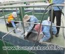 Tp. Đà Nẵng: Xử lý chống thấm chuyên nghiệp tại Đà Nẵng và Miền Trung CL1527192