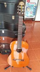 Tp. Hồ Chí Minh: Bán guitar Special Aria Tây Ban Nha CL1669253P3
