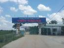 Tp. Hồ Chí Minh: Trung tâm đào tạo lái xe uy tín Tiến Thành CL1681893P5