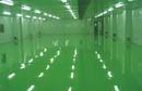 Tp. Hà Nội: Chuyên sơn epoxy và chất phủ bề mặt. CL1669638P16