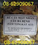 Tp. Hồ Chí Minh: Bán Rễ Cây Mật Nhân-=- Giúp tăng sinh lý, sức đề kháng, phòng bệnh tốt CL1662075