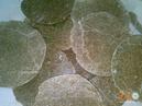 Tp. Hồ Chí Minh: Cung Cấp Bánh Dầu Đậu Phộng hcm CL1662819