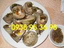 Tp. Hồ Chí Minh: Cần mua thịt ốc vú nàng, giá bán thịt ốc nón, thịt ốc vú nàng giá rẻ, gỏi ốc nón CL1663064P5