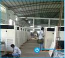 Tp. Hồ Chí Minh: Nhà phân phối máy lạnh và cho thuê máy lạnh công suất 10 hp CAT17_135