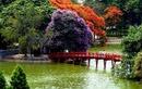 Tp. Hồ Chí Minh: Vé máy bay đi hà nội – mùa của hương hoa bằng lăng và hoa phượng đỏ CL1665006