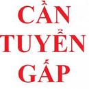 Tp. Hồ Chí Minh: Tuyển Gấp nhân viên nam / nữ làm việc văn phòng tại quận 7 TPHCM . CL1665991