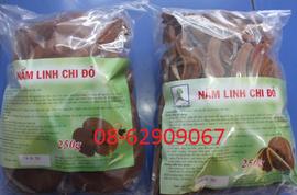 Nấm Linh Chi-Giúp ổn huyết áp, Tăng đề kháng, ngừa ung thư, giảm cholesterol
