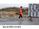 Tp. Hà Nội: Chuyên cung cấp các loại máy xoa nền bê tông động cơ Honda giá tốt nhất CL1669916P6