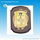 Tp. Hồ Chí Minh: Công ty sản xuất biểu trưng và kỷ niệm chương, bảng vàng vinh danh CUS17067
