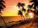 Tp. Hồ Chí Minh: Phan Thiết - Biển xanh, cát vàng CL1698191
