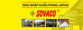 Đơn vị bán đàn Piano Quận 11 và quận Tân Phú