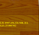 Tp. Hồ Chí Minh: thảm trải sàn, thảm trải sàn simili, thảm lót sàn CL1659857