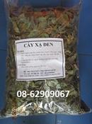 Tp. Hồ Chí Minh: Bán Cây Xạ Đen, loại tốt-Sử dụng để phòng và chữa bệnh ung thư CL1668892