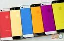 Tp. Hồ Chí Minh: Gia Công Thay Độ Vỏ Iphone CL1696571