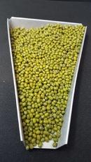 Tp. Hồ Chí Minh: Cung cấp đậu xanh hạt, chuyên đậu xanh làm giá đỗ CL1669947