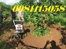 Nam Định: Máy Làm Đất Đa Năng Trâu Vagf Hiệu Quả Kinh Tế Tốt Nhất CUS44416