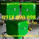Tp. Hồ Chí Minh: phân phối thùng giao hàng sau xe máy giá rẻ nhất tp hcm CL1672956