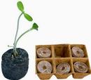 Tp. Hồ Chí Minh: $$$$$ Viên nén ươm hạt làm từ xơ dừa CL1680088P5