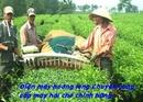 Tp. Hà Nội: Đại lý phân phối máy hái chè chính hãng giá rẻ nhất CL1681888