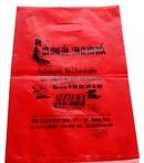 Tp. Hà Nội: In túi nilong uy tín, lấy nhanh tại Hà Nội CL1702977