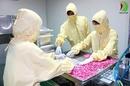 Tp. Hà Nội: Công ty sản xuất thực phẩm chức năng giá rẻ nhất tại Hà Nội, Bàn giao nhanh CL1676260
