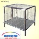 Tp. Hồ Chí Minh: [Sài Gòn] Nhận làm chuồng chó inox mọi kích cỡ CL1691005