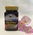 Tp. Hồ Chí Minh: Manuka Honey UMF 5+ (500g) CL1678439