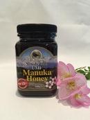 Tp. Hồ Chí Minh: Manuka Honey UMF 15+ (500g) giá tốt CL1678439