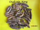 Tp. Hồ Chí Minh: Chuối hột rừng-Chữa nhức mỏi, phong tê thấp, tán sỏi, lợi tiểu CL1678320