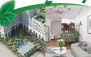Tp. Hà Nội: %*$. Giới thiệu chung cư Eco City Long Biên can ho cao cap CL1679650
