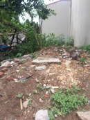 Tp. Hà Nội: !!!!! Bán đất ở Hữu Hòa- Thanh Trì CL1680402