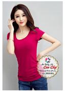 Tp. Hồ Chí Minh: ÁO body nữ cao cấp 13. 000đ CL1681343
