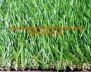 Tp. Hồ Chí Minh: Cỏ sân vườn TT-SVG435 CL1681554