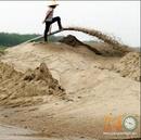 Tp. Hồ Chí Minh: Cung Cấp Cát San Lấp Mặt Bằng CL1682427