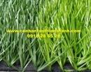 Tp. Hồ Chí Minh: Cỏ sân bóng TT-SBG13 CL1684496P6