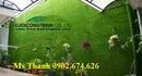 Tp. Hà Nội: Thanh lý các loại cỏ bóng đá, cỏ sân vườn, cỏ golf CAT236_239