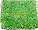 Tp. Hồ Chí Minh: Cỏ sân vườn TT-SVC420 CL1684447
