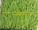Tp. Hồ Chí Minh: Cỏ sân bóng TT-SBC38 CL1684572