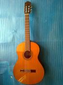 Tp. Hồ Chí Minh: Bán clasical guitar Morris Tây Ban Nha C 500 CL1702663P5