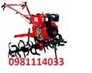 Tp. Hà Nội: 0981114033: bán máy cày xới đất mini 170 giá rẻ nhất hiện nay CL1684955