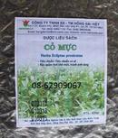 Tp. Hồ Chí Minh: Trà cỏ MỰC-Dùng chữa chảy máu Cam, cầm máu, chữa thận âm hư CL1685695P4