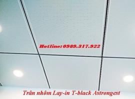 Bán trần nhôm Lay in T black Austrong, Trần nhôm Astrongest
