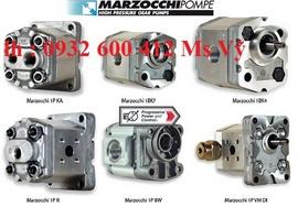 đại lý phân phối chính thức Marzocchi 1P tại ViệtNam